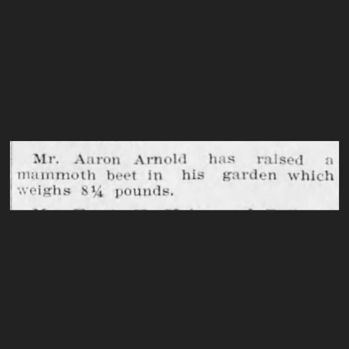 (Adams County Independent, 11.01.1902, via Newspapers.com)