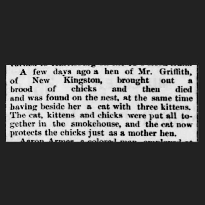 (Harrisburg Telegraph, 06.06.1888)