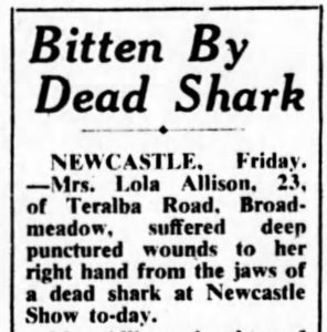 """Bitten by Dead Shark"" (The Sydney Morning Herald, 02.25.1950)"